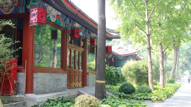 parque chines