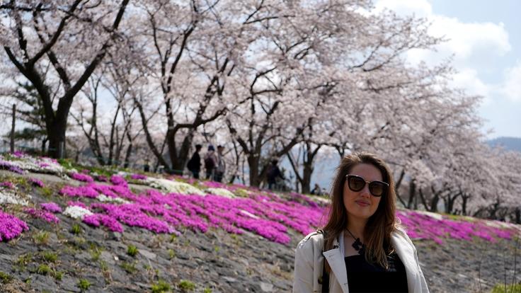 cerejeiras1