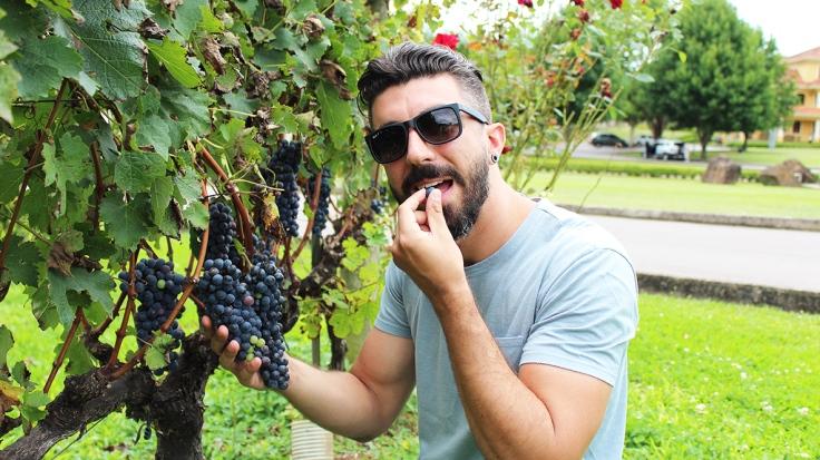 comer uva